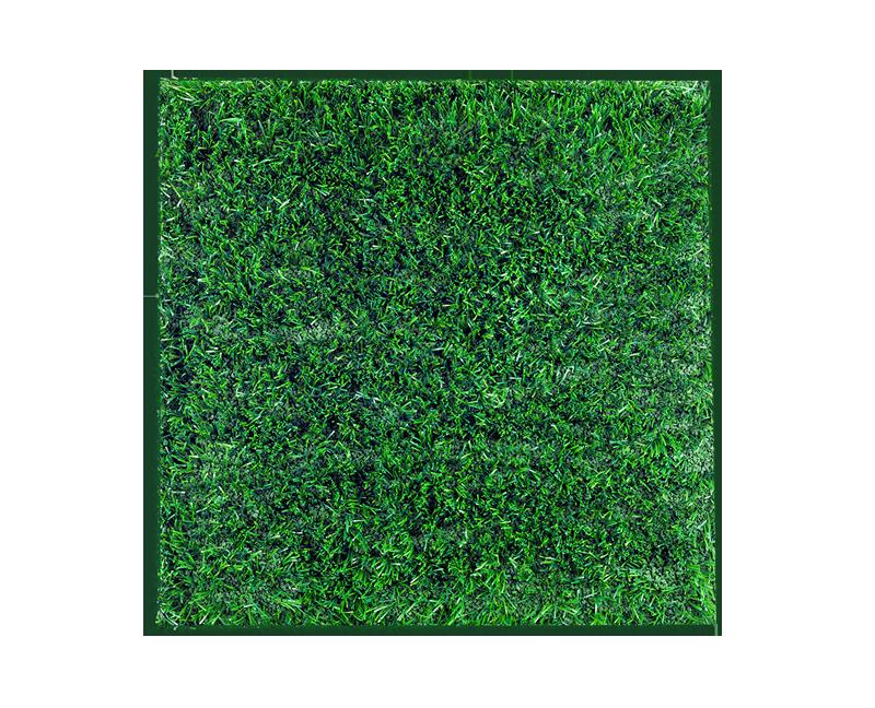 Turf Image